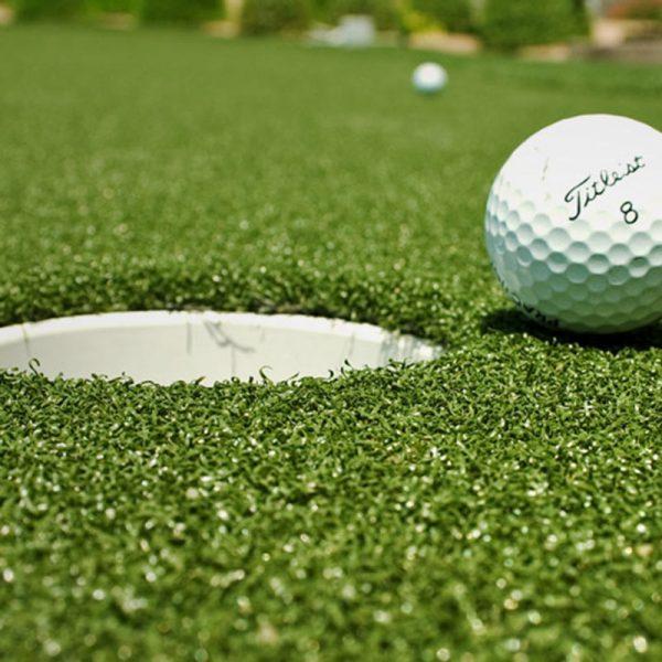 Basket | Quality Artificial Grass | Easylawn Artificial Grass